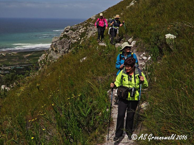 Hiking the Contour Path along the Zig-Zag Trail, Harold Porter Botanical Garden - Betty's Bay in the Western Cape.