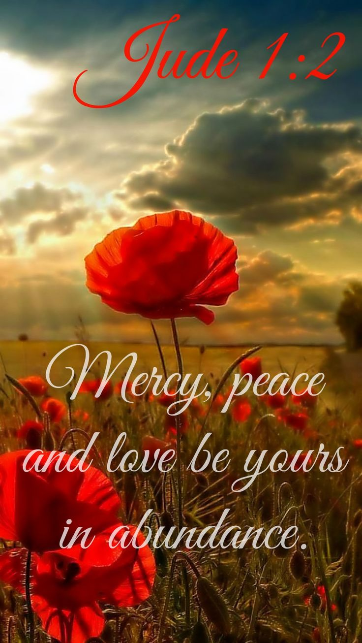 """MERCY, PEACE AND LOVE BE YOURS IN ABUNDANCE"" Jude 1:2... to each and everyone of you!"