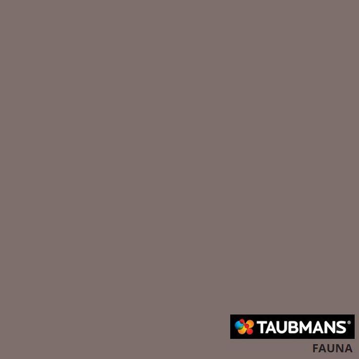 #Taubmanscolour #fauna