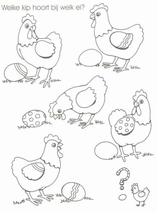 welke kip bij welk ei ?