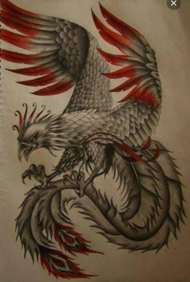 367 best mythical creatures phoenix images on pinterest phoenix tattoos tattoo ideas and. Black Bedroom Furniture Sets. Home Design Ideas