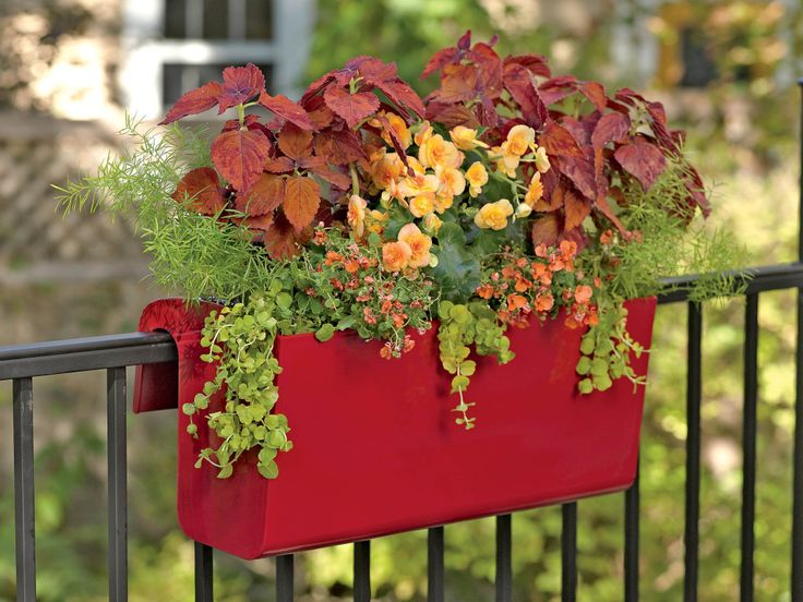 lovely-viva-deck-railing-planter_balcony-planter-box_self-watering_mix-plant-and-flower-grow-place_black-metal-rails_red-color-planter_high-gloss-finish_outdoor-herb-garden-ideas.jpg (1024×768)
