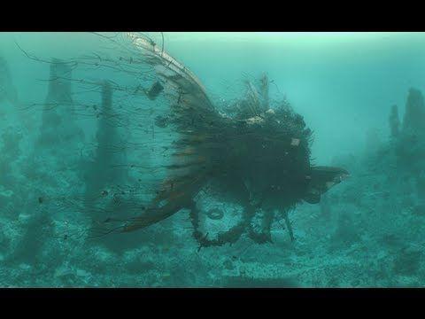"""CGI VFX Breakdowns HD: """"Jonah"""" by Factory Fifteen"""
