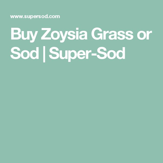 Buy Zoysia Grass or Sod   Super-Sod
