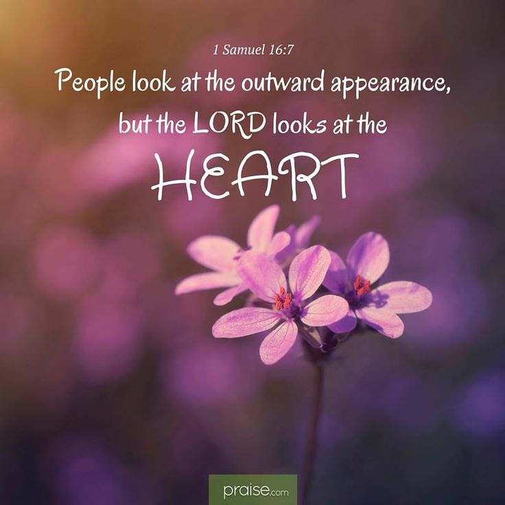 """But the LORD said to Samuel, """"Do not look at his appearance or at the height of…"""