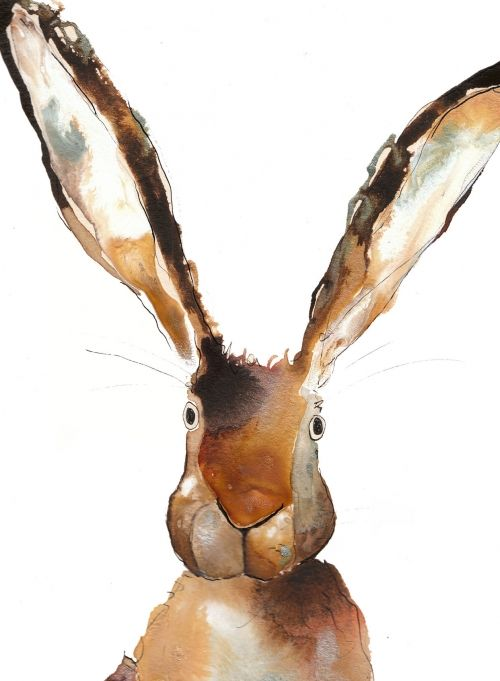 All Ears! 'Bernards Ears' Hare #watercolour #illustration #rabbit #hare pinned by www.amgdesign.nz