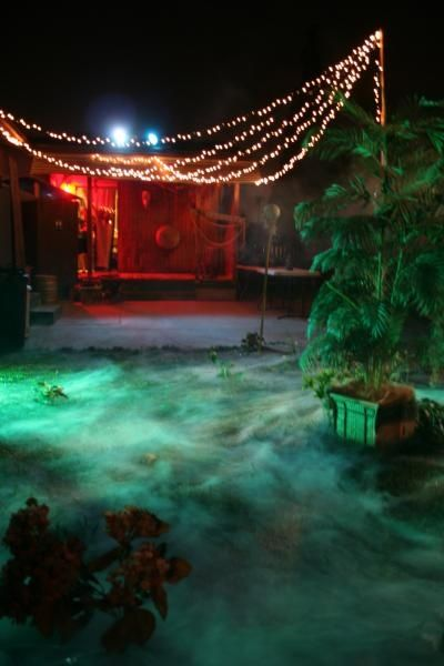 11 Best Halloween Ideas For Pools Images On Pinterest Halloween Party Ideas Pool Ideas And