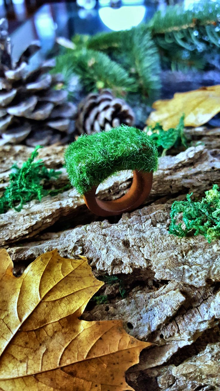 Moss Wood Ring, moss ring, wood ring