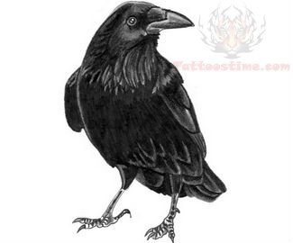 Black Bird Crow Tattoo Design