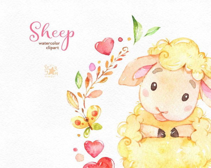 Pecore. Acquerello di ClipArt caratteri carine cuore