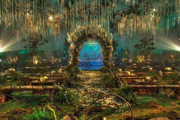 Set of Twilight Wedding Scene.  Okay, totally ridiculous, but I like the colors.