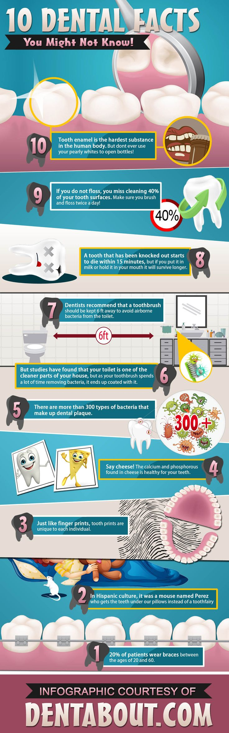 Take a look at some of these interesting dental facts. Contact our dentist for more information or to schedule an appointment at portageparkdentist.com.