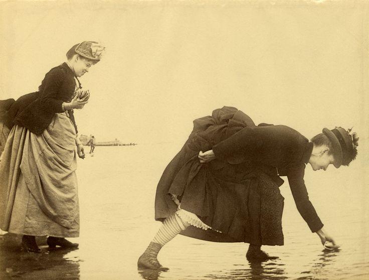 Collecting Shells, Manhattan Beach, Coney Island, 1885.  NYHS Image #66803
