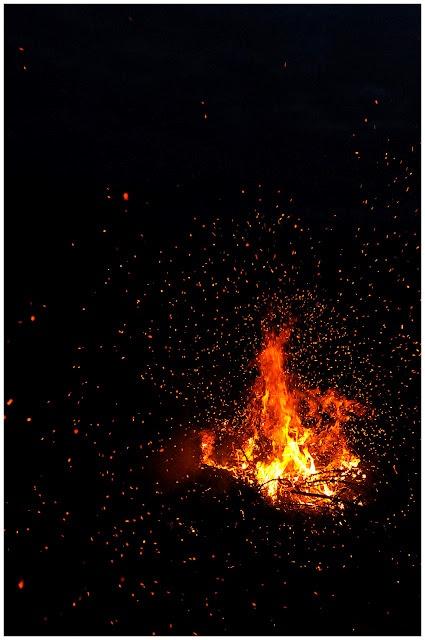 Objkt-Photography: Fire spores