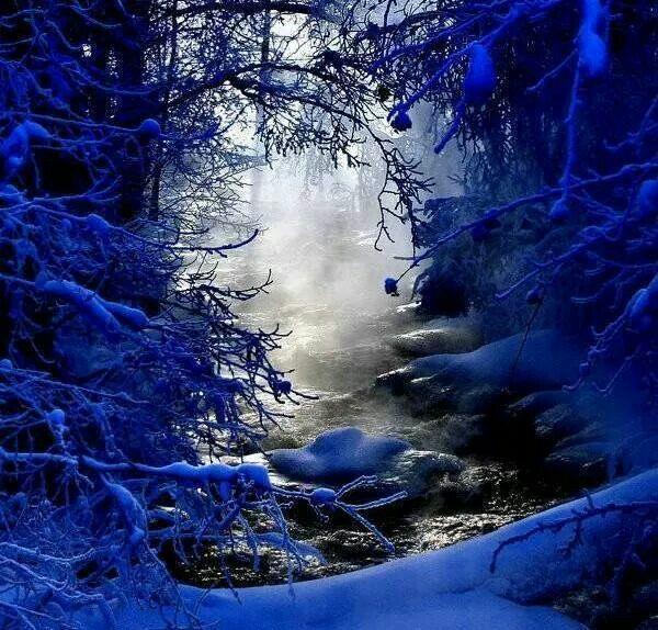 Mists of Winter