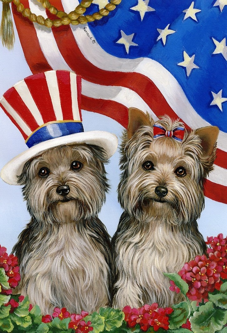 Patriotic Yorkies