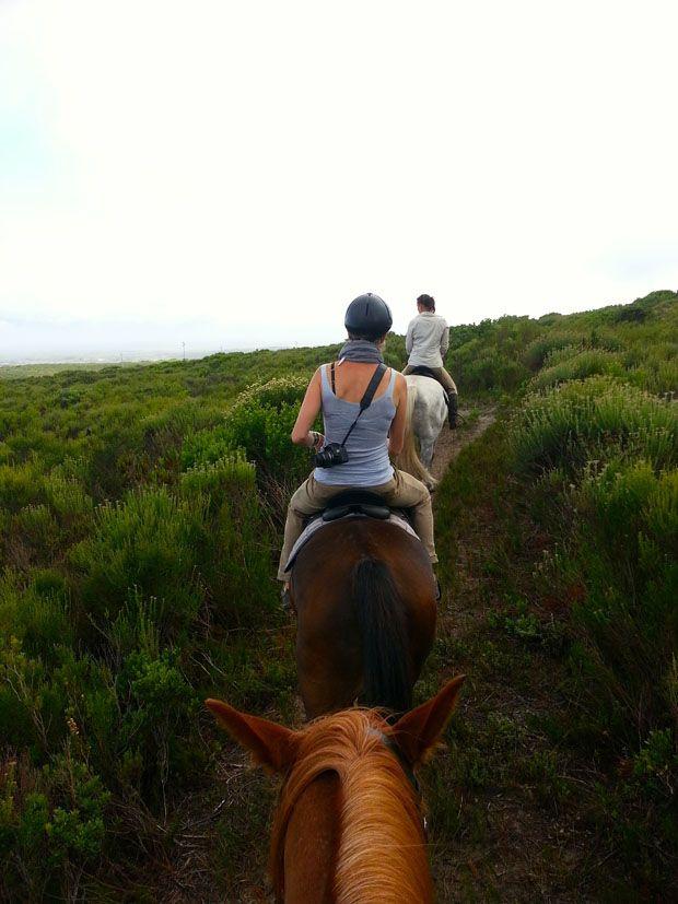 Adventure Series - Horseback vs. Horsepower by Dawn Jorgensen #HorseRiding #Adventure #Travel http://www.grootbos.com/en/blog/travel/horse-riding-vs-horsepower