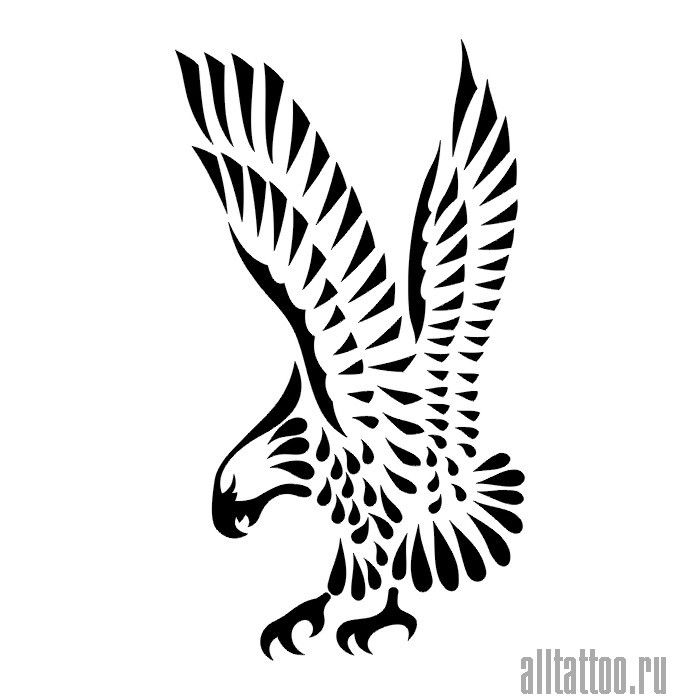 Eagle Tattoo Line Drawing : Bästa bilder om eagles på pinterest skisser silhuett