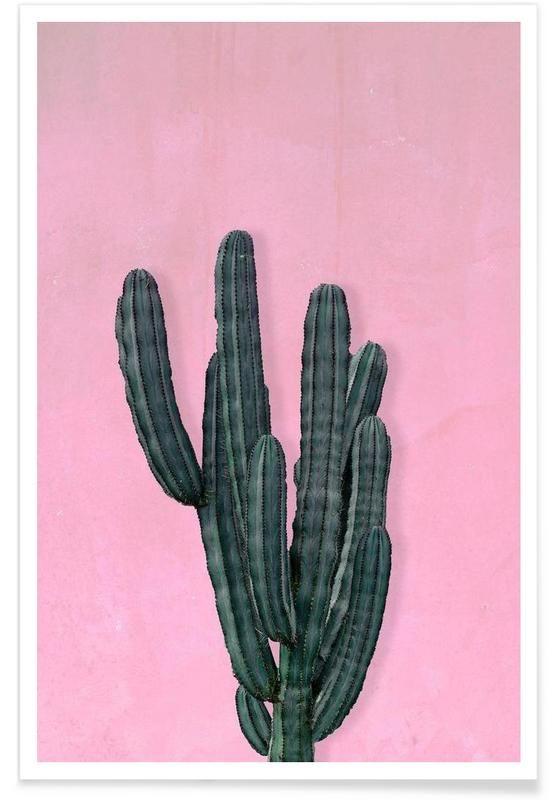 Kaktus als Premium Poster von typealive | JUNIQE