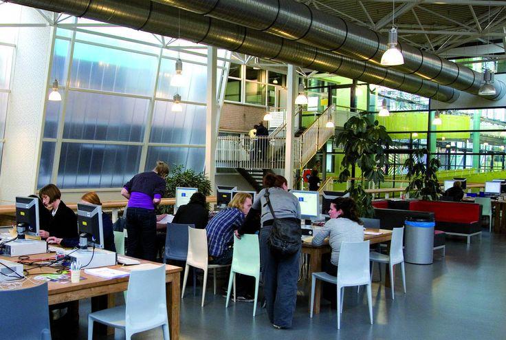 Global Project and Change Management studieren am Windesheim Honours College  #Global #Project #Change #Management #studieren #studium #nachhaltigkeit #entwicklungshilfe #afrika #umwelt #klima  http://fh-windesheim.de