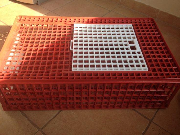 Baromfi szállító műanyag rekesz 95 x57 cm és 28 cm magas