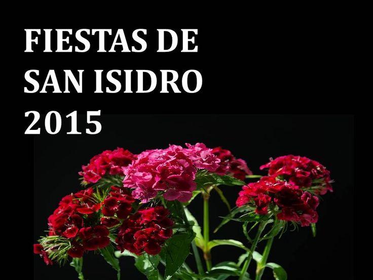 San Isidro 2015. Madrid. España.