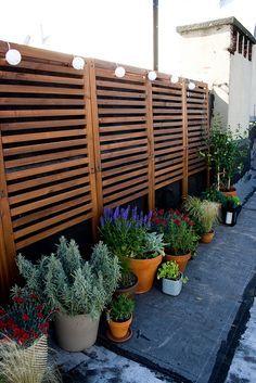 outdoor garden screen - Google Search