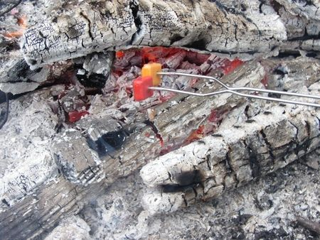 Campfire Roasted Starbursts