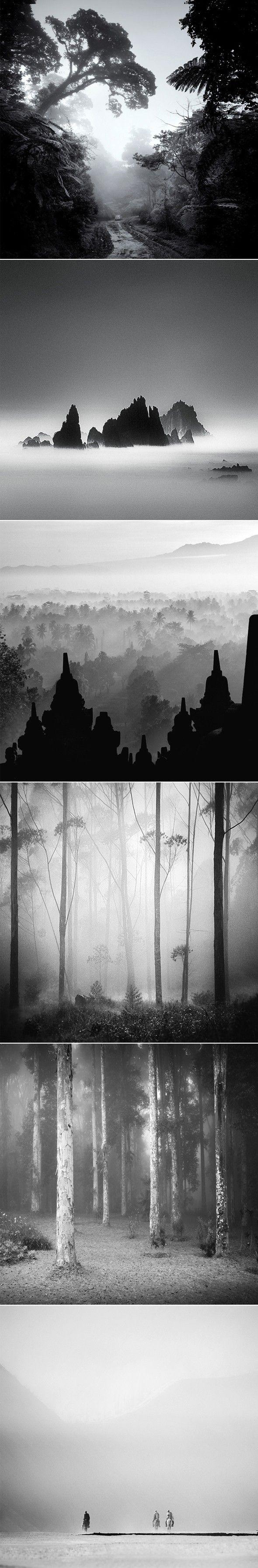 Photos noir et blanc paysage