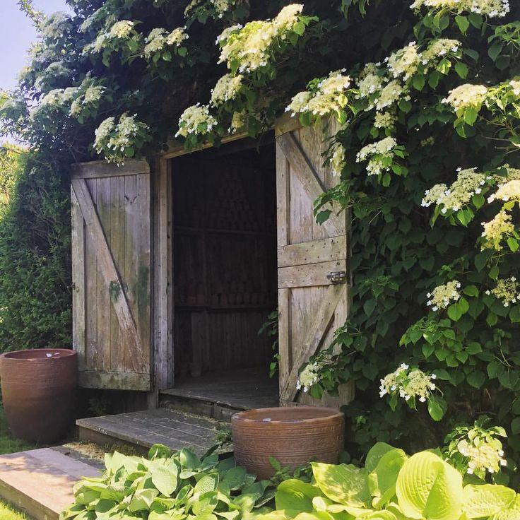 Garden Sheds Rooms 1268 best garden/garage/outdoor rooms images on pinterest