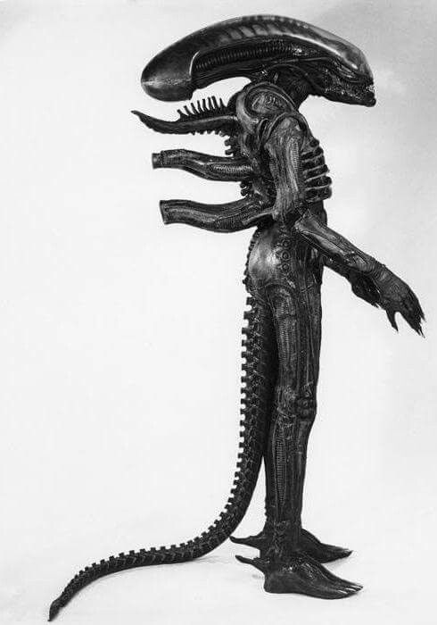 Full Xenomorph costume from 'Alien'