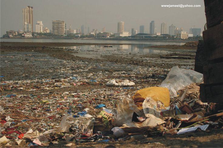 Ocean pollution essay