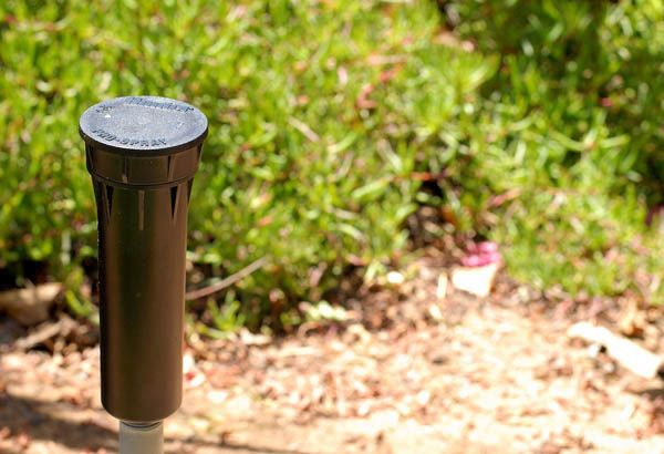 Sprays - Capping Off Sprinkler Head | Hunter Industries