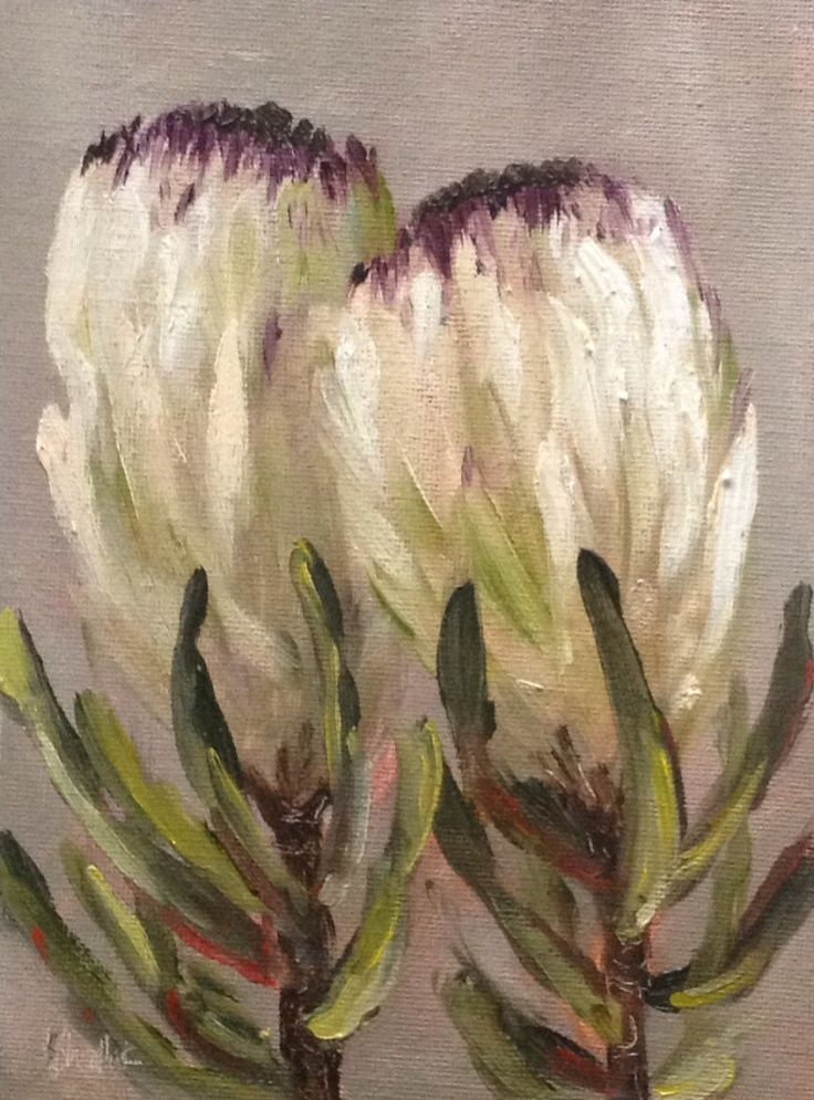 """Studio proteas #365"" daily painting by Heidi Shedlock. Almost 365 days of daily painting! Visit the blog and follow links to online store."