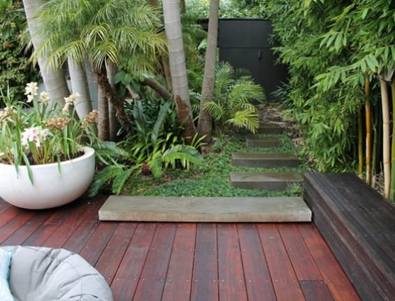 subtropical new zealand designed gardens pinterest