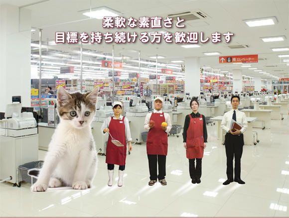 Tokyo's Cheapest Supermarket? – OK