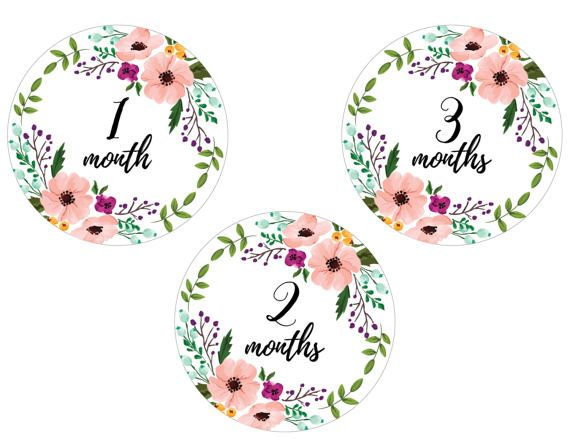 Baby Monthly Pictures Girl Birthday Stickers Baby Shower