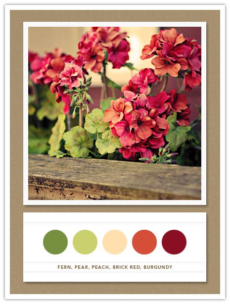 fern, pear, peach, brick red, burgundy >> adore the colors
