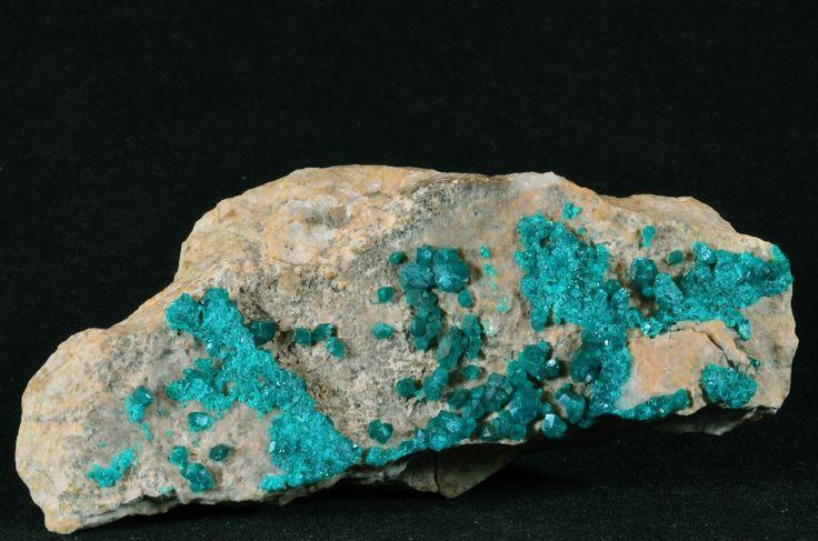 Wspaniałe kryształy Dioptazu.   Duży okaz ekspozycyjny zawierający wiele kryształów io wymiarach do 0.8 cm !  Dioptaz należy do minerałów rzadkich.    Pochodzenie:   Wymiary: 13 x 5 x 6 cm  Waga: 385 g  Wzór chemiczny: Cu6[Si6O18] x 6H2O uwodniony krzemian miedzi