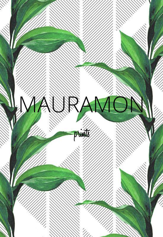 Greenhouse - MAURAMON