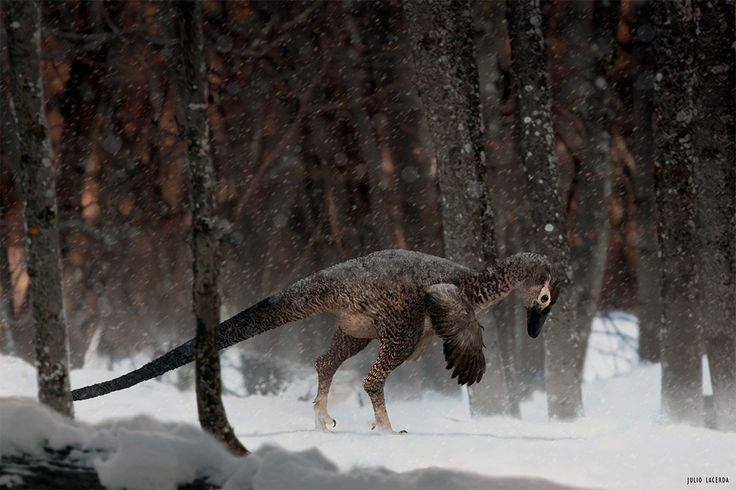 Alaskan Troodontid by Julio Lacerda