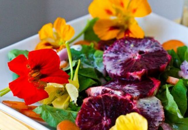 652x450_086684-cum-sa-cultivi-flori-comestibile