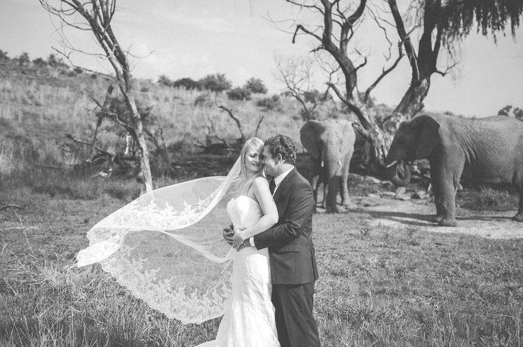 Photography: Creative Emporium. Venue: Askari lodge, South Africa