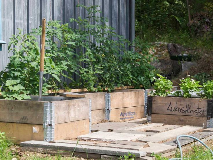 grønnsakshagen