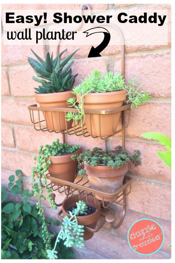 How To Use A Shower Caddy As A Vertical Planter Herb Garden