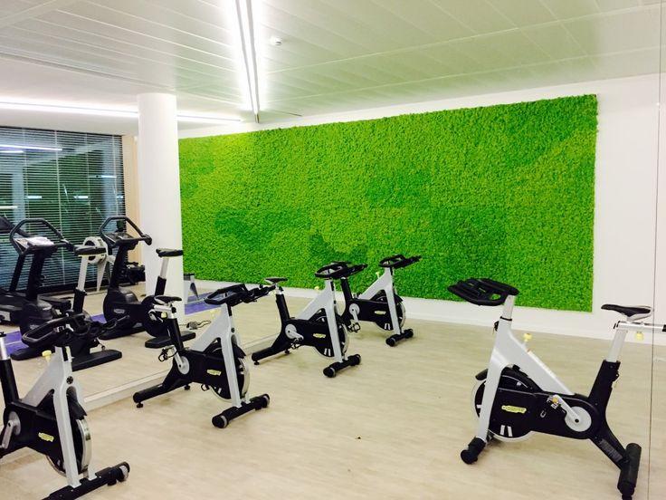 een frisse groene toets in de fitness met een mos wand