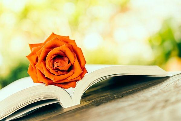 Los estudiantes escritores de la UOC proponen títulos de temas muy variados, con numerosas obras de ensayo, pero también con novela y poesía.