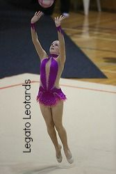 From Legato Leotards.  We can custom-make your leotard...