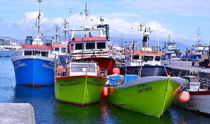 Porto de Ponta Delgada-Barcos de pesca   Flickr - Photo Sharing! Lua Cheia e Maria Francisca