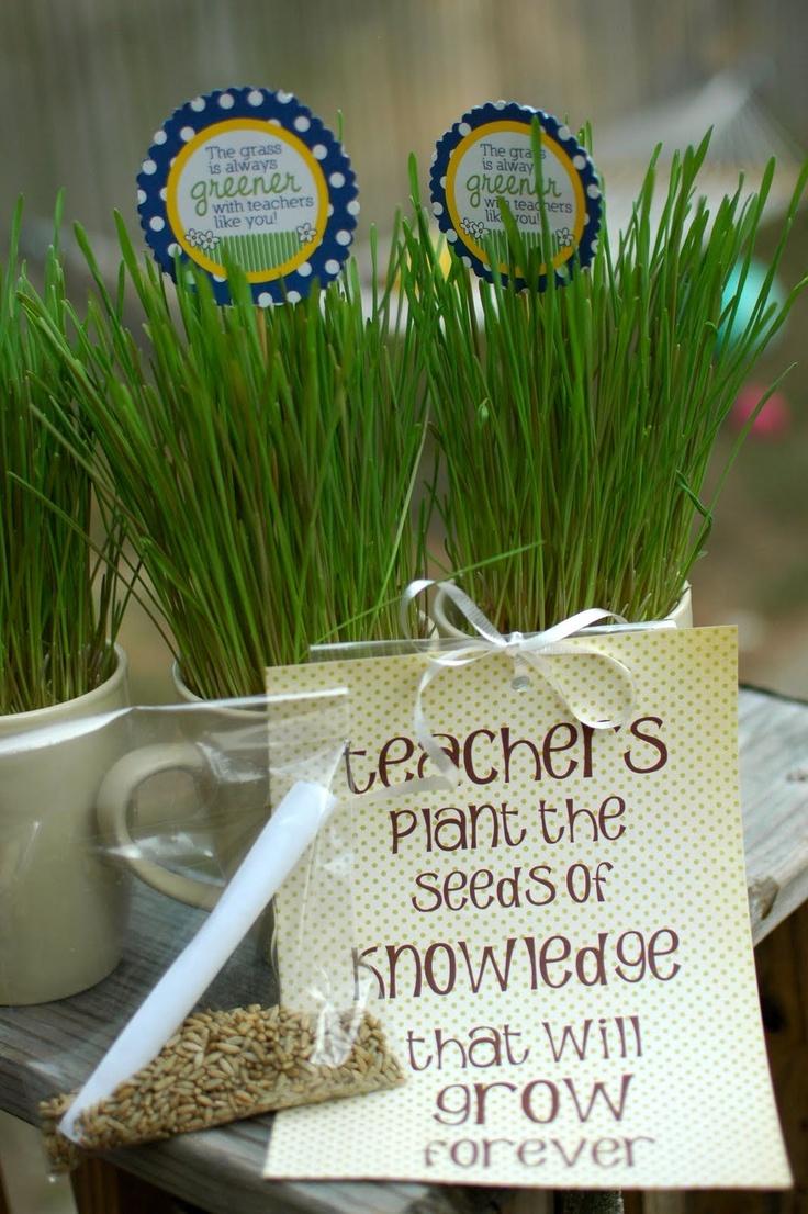 TurtleCraftyGirl: Teacher's Appreciation Week  Wheat grass gift